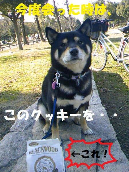 DCF_0070_convert_20081222000233.jpg