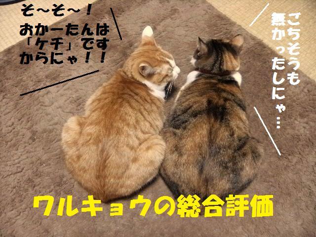 DSCF0280_20100104023940.jpg