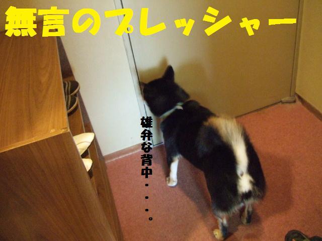 DSCF1479.jpg