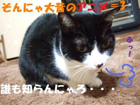 DSCF3158_convert_20081217014740.jpg