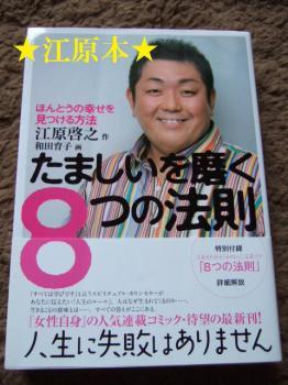 DSCF4388_20090301022436.jpg