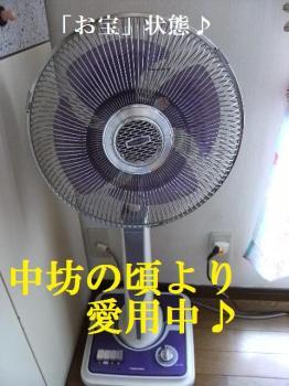DSCF5667.jpg