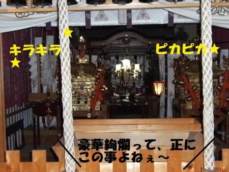 DSCF7347.jpg