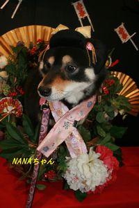 nanachan21220sss.jpg