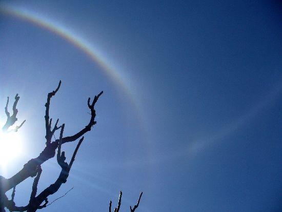太陽を取り巻く2つの環2