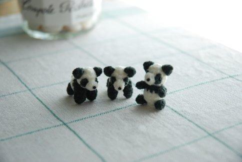 panda10-8.jpg