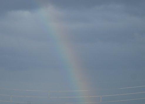 rainbow10-1.jpg