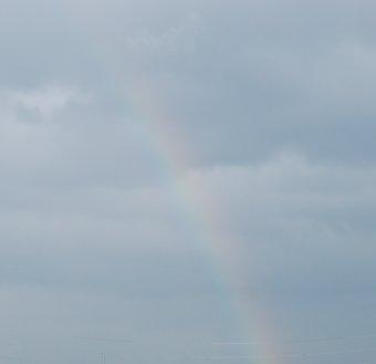 rainbow10-2.jpg