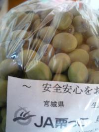 アオバタ豆