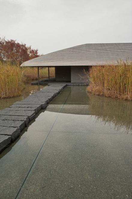 佐川美術館 茶室 水 葦 飛び石