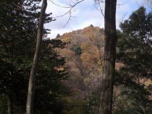 松茸山遠望 クリックすると画面は大きくなります。