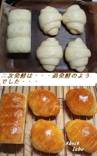 ロールパン過発酵