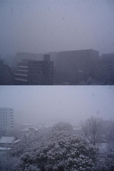 90124P1240499雪2