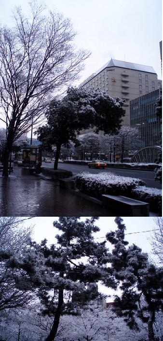 90124P1240501雪3