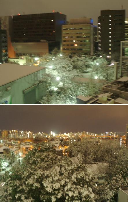90124P1240491雪