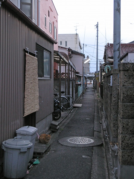 20080214_042