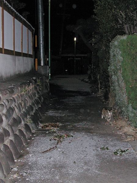 20080224_006