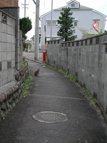 20080426_013