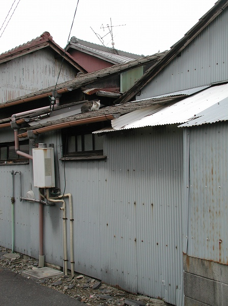 20080426_024