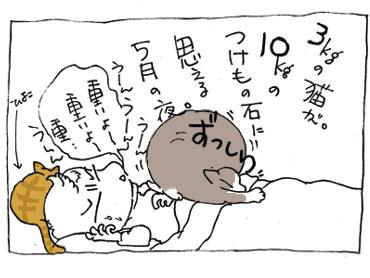 20080511_1.jpg