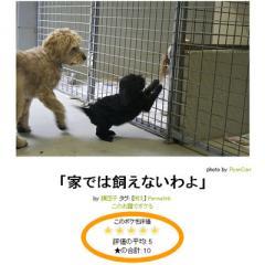 about_hyouka.jpg