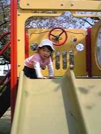 Image502_convert_20090414083621.jpg