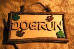 dog_run4.jpg