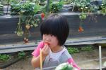 DSC_0250_convert_20090223094717.jpg
