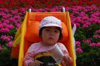 DSC_0295_convert_20090422084343.jpg