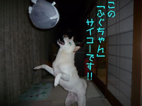 山口みやげ 「この」って...(^^;)