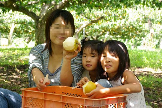 2008.9.23梨狩り 1