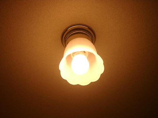 2008.10.15電球 2