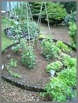 5.27 お庭