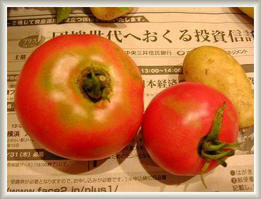 7.1 収穫④