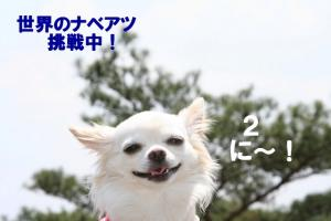 IMG_9165.jpg