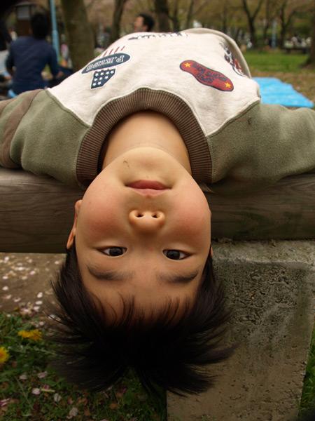 4-13-hanami-kodomo.jpg