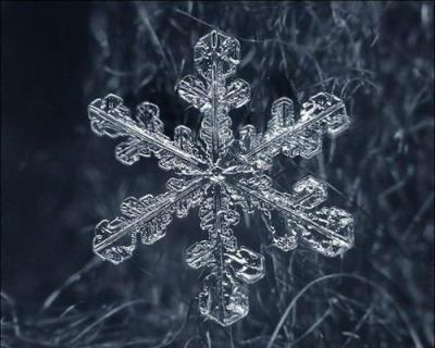 beautifulsnowflake01.jpg