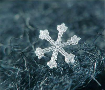 beautifulsnowflake02.jpg
