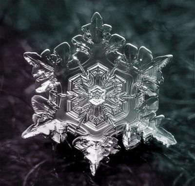 beautifulsnowflake06.jpg