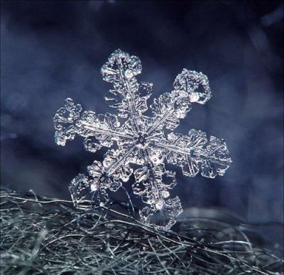 beautifulsnowflake08.jpg