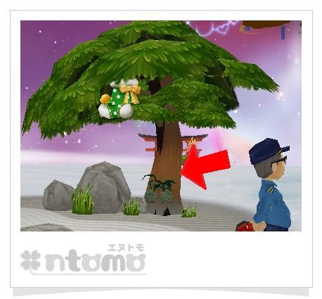 たまたまな木