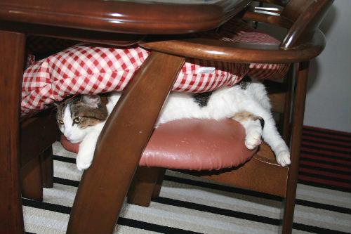 椅子の座り方2