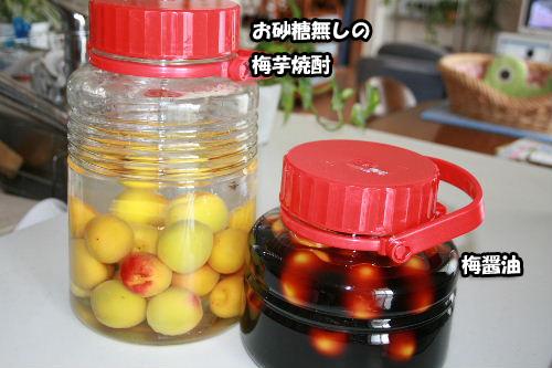 梅醤油梅芋焼酎