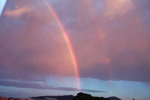 ふたつの虹