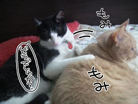 肩モミ_くろ2