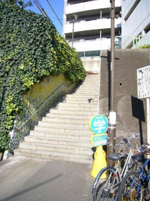 ビザ 階段