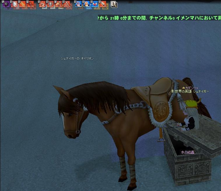 mabinogi_2009_05_15_003.jpg