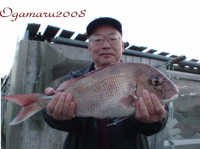 2008-10-20b.jpg