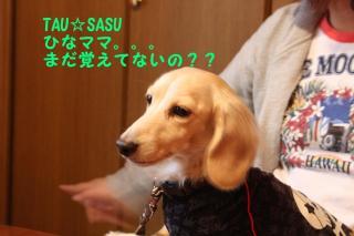 北軽井沢3