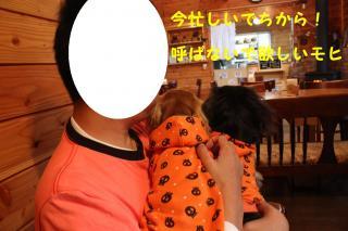 北軽井沢4
